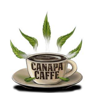 cannabis cup erba legale