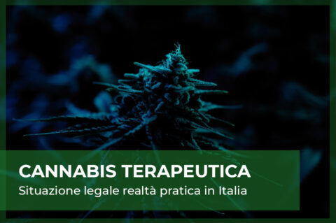cannabis light e marijuana terapeutica