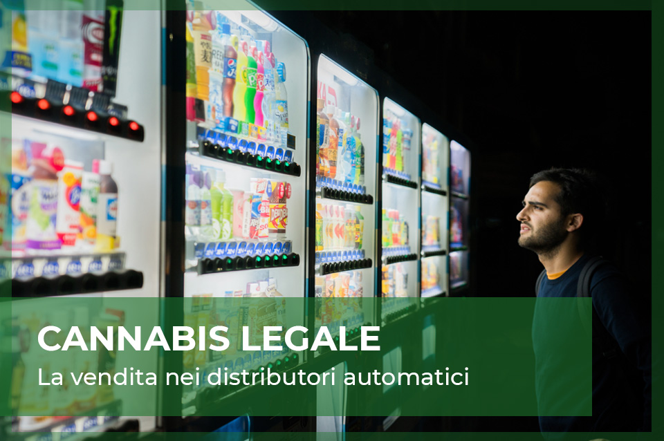 cannabis light distributori automatici