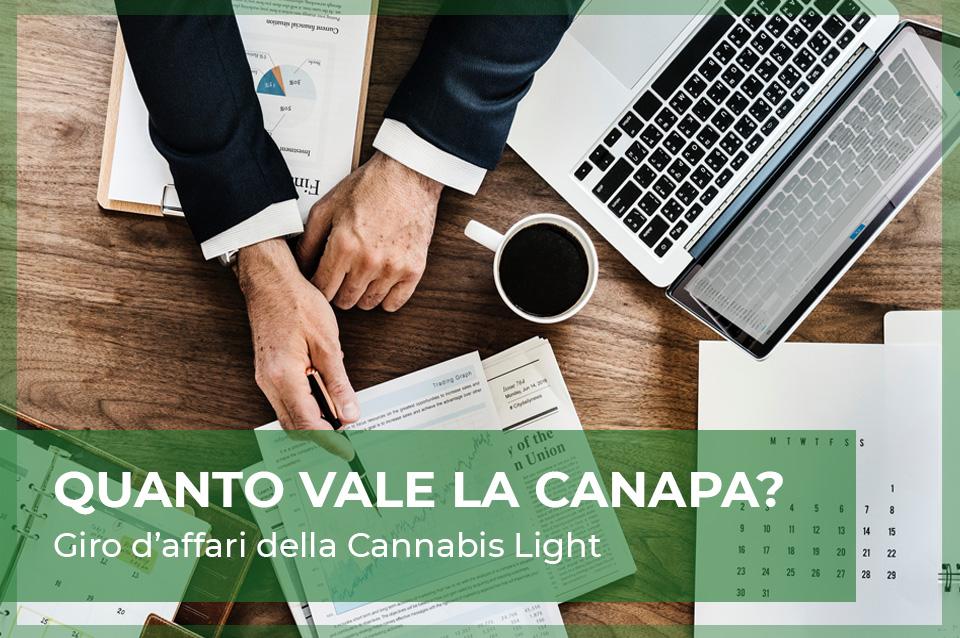 guadagni cannabis light e marijuana