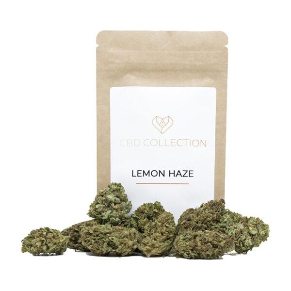 lemon haze negozio erba legale