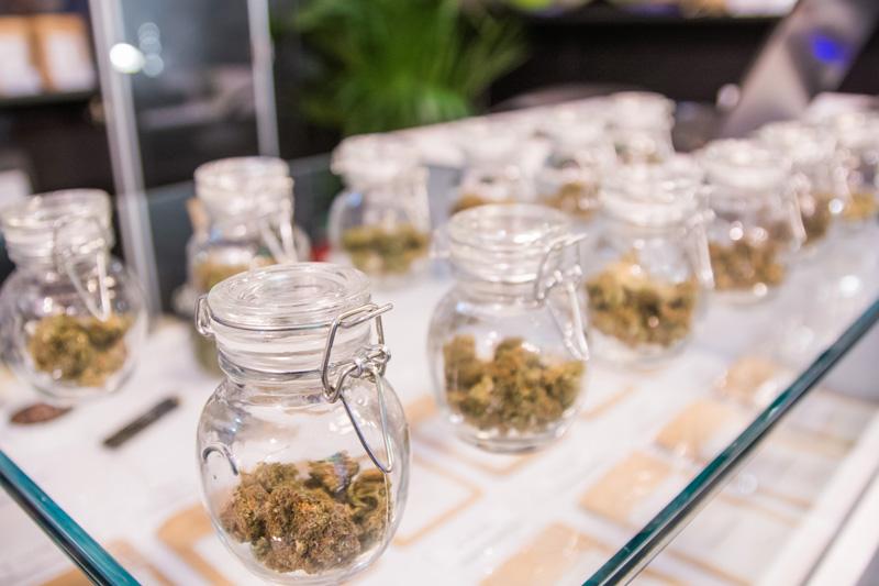 negozio cannabis light online