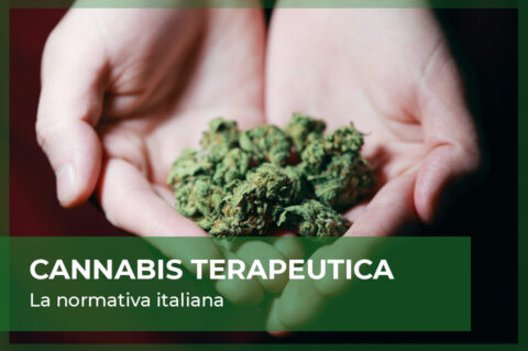 Cannabis terapeutica in Italia