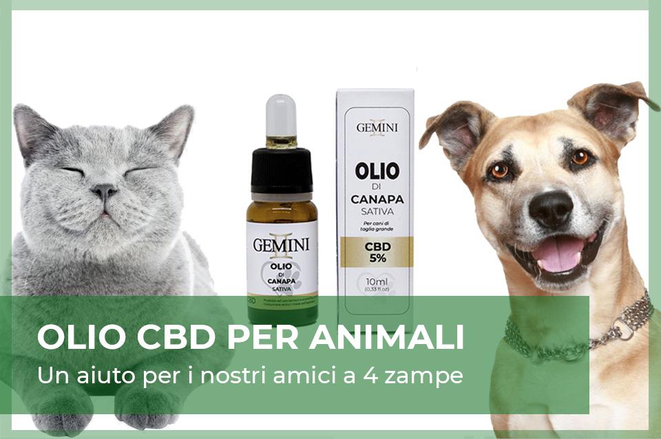 Olio CBD animali PET - cane e gatti