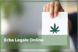 erba legale online